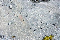 Glacier footprint Stock Photos