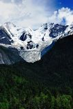 Glacier and Forest Stock Photos