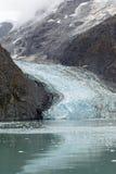 Glacier in Glacier Bay National Park and Preserve Royalty Free Stock Image