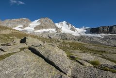 Gran Paradiso glacier. The glacier of Gran Paradiso Mountain in Valle d` Aosta stock photography