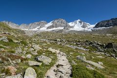 Gran Paradiso glacier. The glacier of Gran Paradiso Mountain in Valle d` Aosta stock image