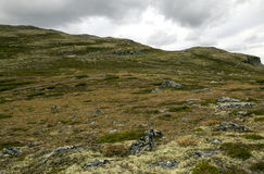 Glacier in the grasslands of southern Norway Stock Images