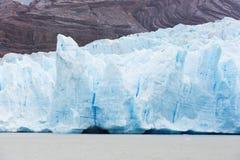 Glacier grey in patagonia Stock Images