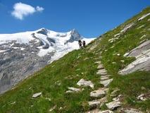 Glacier of grossvenediger Royalty Free Stock Photography