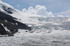 Glacier Ice Field Stock Images