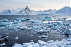 Glacier ice floating in the Arctic fjord - Spitsbergen Stock Photography