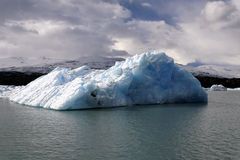 Glacier ice floe royalty free stock photography