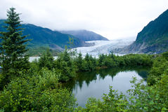Glacier à Juneau Alaska Photo stock