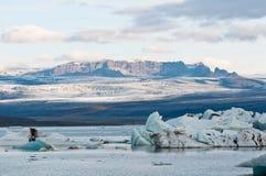 Glacier lake in Iceland Stock Image