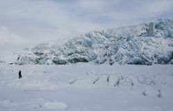 The glacier and the man. Royalty Free Stock Image