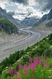 Glacier Mer de Glace (Sea of Ice) - glacier, landmark attraction in the Alps mountains Royalty Free Stock Image