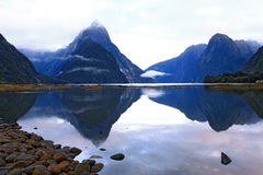 Glacier at milford sound, New Zealand Stock Photography