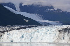 Glacier National Park - Alaska Fotografia Stock