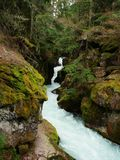 Glacier National Park, Avalanche Gulch. River stock images