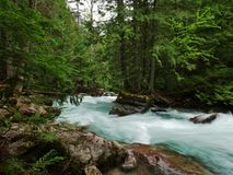 Glacier National Park, Avalanche Gulch river. Glacier National Park, Avalanche Gulch aqua glacier water winding through trees stock photography