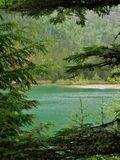 Glacier National Park, Avalanche Lake through trees. Glacier National Park, Avalanche Lake framed by trees royalty free stock photography