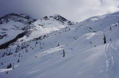 Glacier National Park, Canada. Winter landscape. Stock Photos