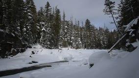 Glacier National Park che nevica nell'inverno video d archivio
