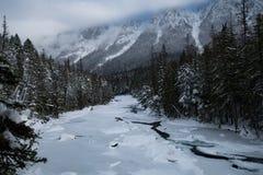 Glacier National Park che nevica nell'inverno Immagini Stock Libere da Diritti