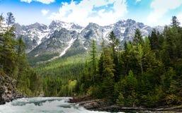 Glacier National Park dell'insenatura di McDonald del lago, Montana fotografie stock libere da diritti