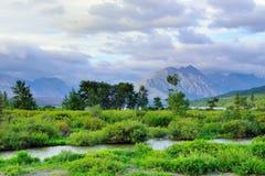 Glacier National Park di estate Fotografia Stock Libera da Diritti