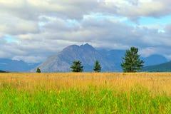 Glacier National Park di estate Fotografie Stock Libere da Diritti
