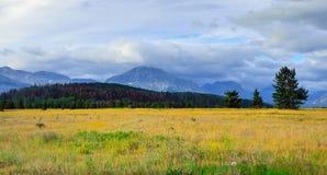 Glacier National Park di estate Immagini Stock Libere da Diritti