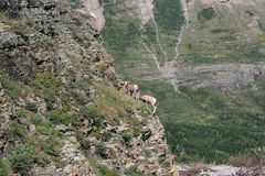 Glacier National Park, Montana Royalty Free Stock Image