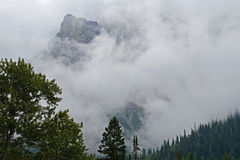 Glacier National Park mountains covered with fog. Stock Images