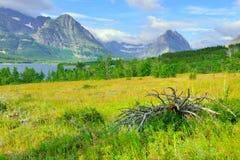 Glacier National Park by Sherburne lake Royalty Free Stock Images