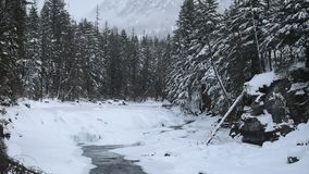 Glacier National Park Snowing in Winter stock video footage