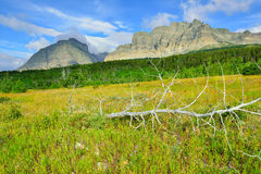 Glacier National Park summer scenery Royalty Free Stock Images