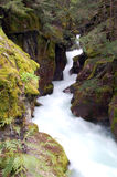 Glacier Nationalpark-Strom Lizenzfreies Stockbild