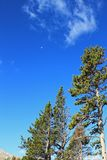 Glacier Natural Park Sky and moon Royalty Free Stock Images