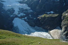 Glacier nearby Grindelwald in Alps in Switzerland Royalty Free Stock Image