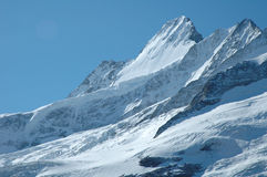 Glacier nearby Grindelwald in Alps in Switzerland Stock Photos