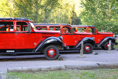 Glacier park buses. Red classic tourist buses in Glacier national park royalty free stock photo