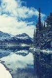 Glacier Park Stock Images