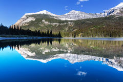 Glacier Park Royalty Free Stock Photography