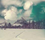 Glacier Park in winter Stock Image