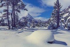 Glacier Park in winter Stock Images