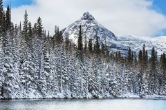 Glacier Park in winter Royalty Free Stock Images