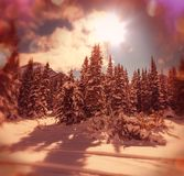 Glacier Park in winter Stock Photos