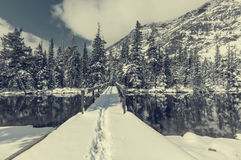 Glacier Park in winter Stock Photography