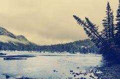 Glacier Park in winter Royalty Free Stock Photo