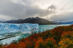 Glacier Perito Moreno in the park Los Glaciares. Autumn in Patagonia, the Argentine side.  royalty free stock photo
