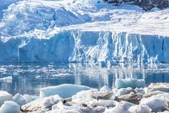 Glacier reflected in the Antarctic waters of Neco bay and a few. Pinguins laying on icebergs, Antarctica Royalty Free Stock Photos