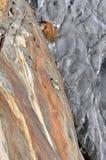 Glacier Route Stock Image