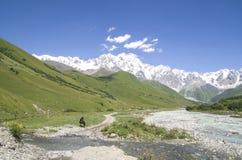 Glacier Shkhara and the Inguri River Valley, Svaneti. Georgia stock image