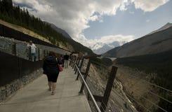 Glacier Skywalk Stock Image